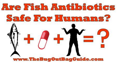 Fish Antibiotics For Humans
