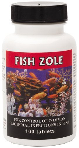 fish antibiotics for humans a safe option for your