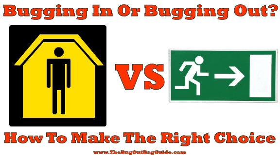 bug in vs bug out