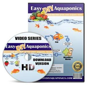 home aquaponics